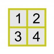 13-rzut